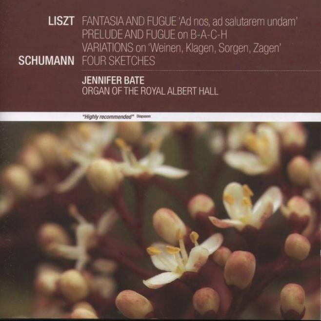 Liszt: Fantasia & Fugue; Prelude & Fugu; Vatiations On Weinen, Klagen, Sorgen, Zagen