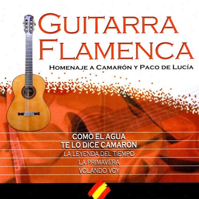 """n⺠5 """"your Songs On Spanish Guitar"""" (homenaje Flamenco A """"camarã³n De La Isla"""")"""