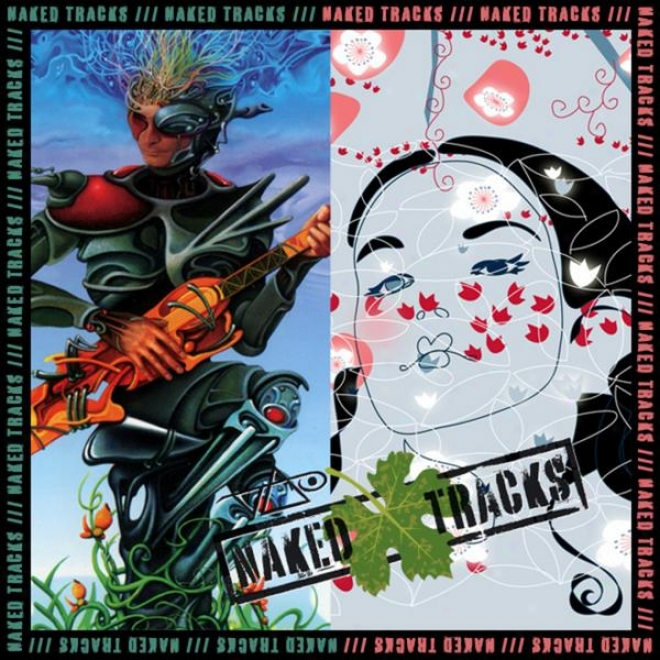 Naked Tracks Vol. 5 (the Ultra Zone / Actual Illusions - Mixes With No Lead Guitar)