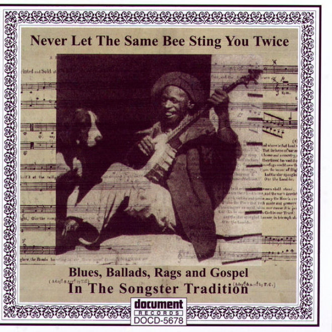 Never Let The Same Bee Sting You Twice - Blues, Ballads, Rag s& Gospel In The Songster Tradition