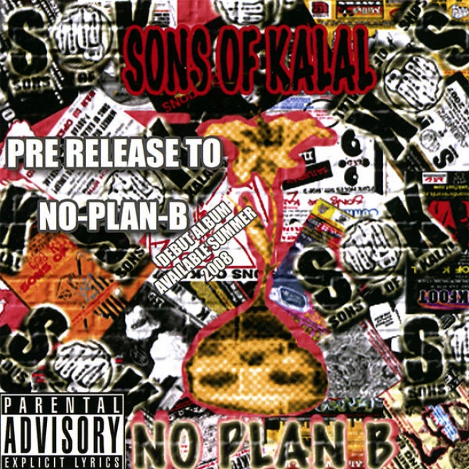 No Plan B - We Sell Out Shows, Tour As Much Aq Possible, Have Professional Representation, Not At Home Rappers