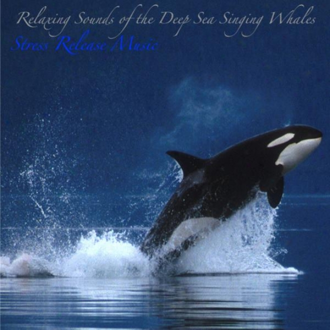 Relaxing Sounds Of The Deep Sea Singing Whales: Music For Deep Meditation, Relaxation, And Sleep