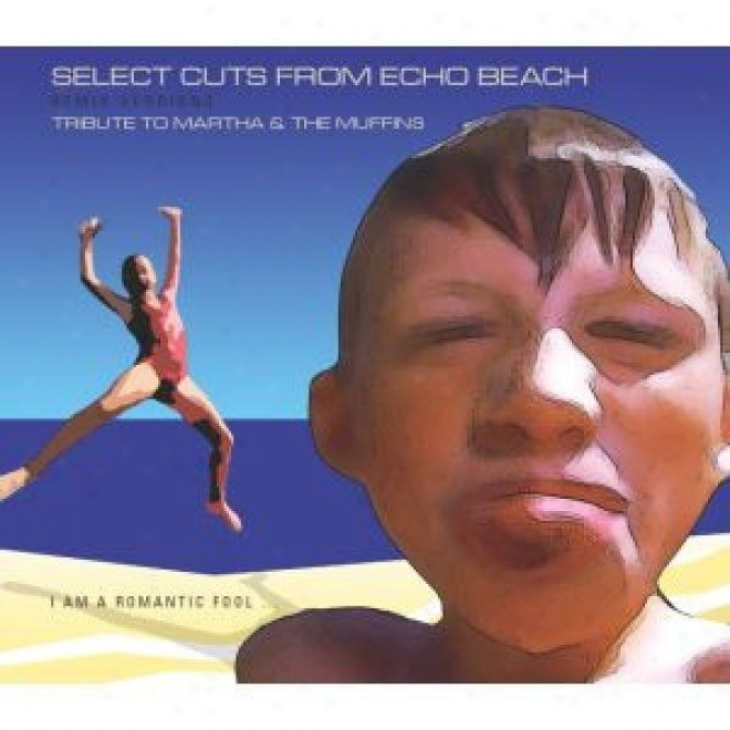 Select Cuts From Echo Beach - Remix Versions - Tribute To Martha & The Muffins