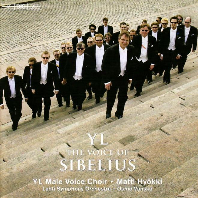 Sibelius, J.: Partsongs/vapautettu Kuningatar/rakastava/laulu Lemminkaiselle (yl Male Voice Choir) (yl - The Voice Of Sibelius)