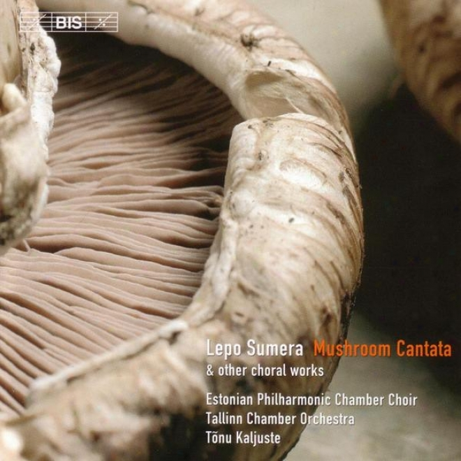 Sumera: Mushroom Cantata / Concerto Pdr Voci E Strumenti / Island Maiden's Song From The Sea