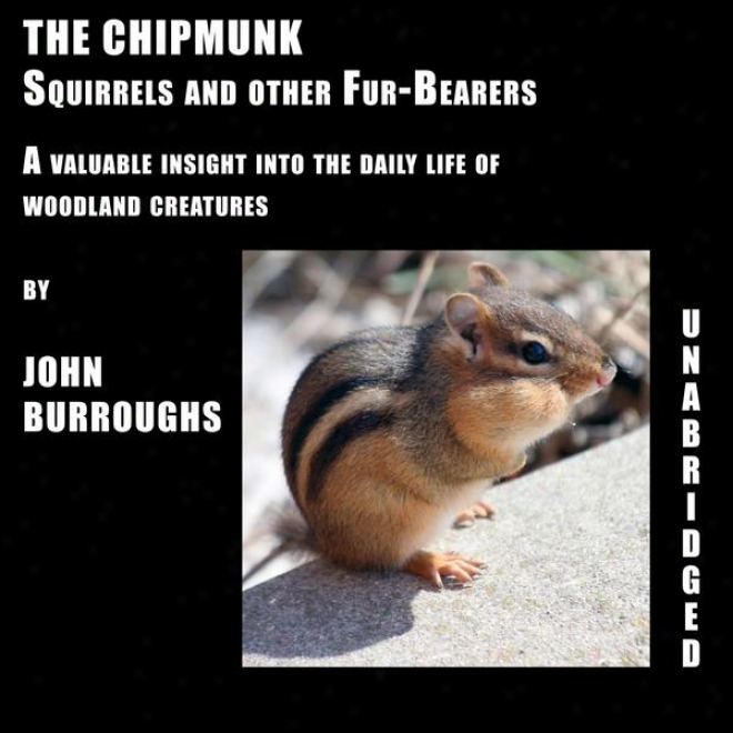 The Chipmunk (unabridged), A Precious Insight Into The Diurnal Life Of Woods Crwatures, By John Burroughs