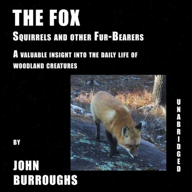 The Fox (unabridged), A Valuable Deep view Into The Daily Life Of Woodland Creatures, By John Burroughs