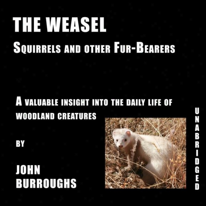 The Weasel (unabridged), A Valuable Insight Into The Daily Life Of Woodland Creatures, By John Burroughs