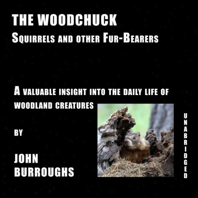 The Wodchuck (unabridged), A Valuable Insight Into The Daily Life Of Woods rCeatures, By John Burroughs