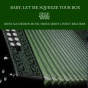 Baby, Let Me Squeeze Your Box - Irish Accordion Music From Green Linnet Records