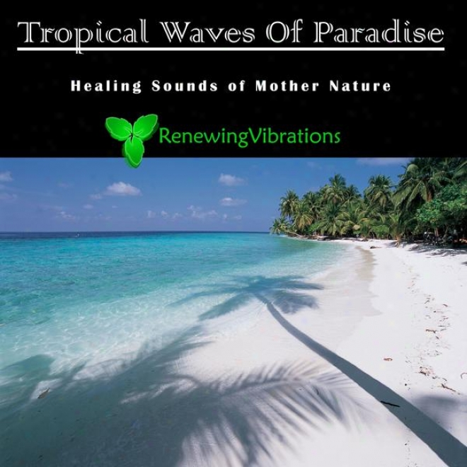 Tropical Waves Of Paradise. Mild Sounds Of Mother Nature. Great For Relaxation, Meditation, Sound Therapy And Sleep.