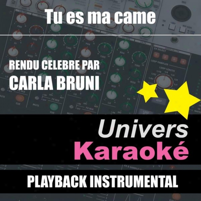 Tu Es Ma Came (rendu Cã©lã¸bre Par Carla Bruni) [version Karaokã©] - Single