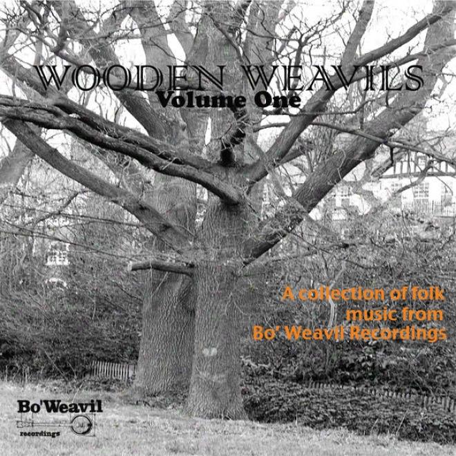 Wooden Weavil Volume 1 (collection Of Folk Music From Bo' Weavil Recordings)