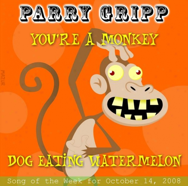 You're A Monkey: Parry Gripp Lay Of The Week For November 4, 2008 - Single