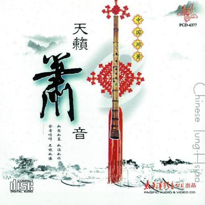 Zhong Guo Dong Xiao . Tian Lai Zhi Yin (chinese Tung-siao. Sound From Heaven)