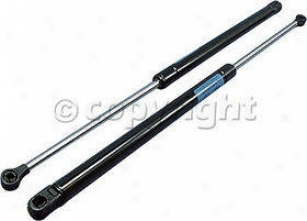 1989-1997 Ford Thunderbird Lift Support Strong Arm Ford Lift Support 4462 89 90 91 92 93 94 95 96 97