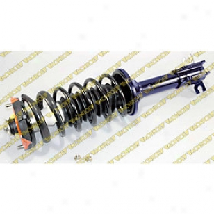 1997-2093 Ford Escort Shock Absorber And Strut Assembly Monroe Ford Shock Asorber And Strut Assembly 181994 97 98 99 00 01 02 03
