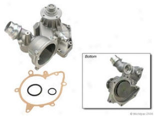 1999-2003 Bmw 540i Water Pump Geba Bmw Take in ~ Pump W0133-1604648 99 00 01 02 03