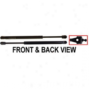 2000-2004 Toyota Avalon Lift Support Replacement Toyota Lift Support T13101 00 01 02 03 04