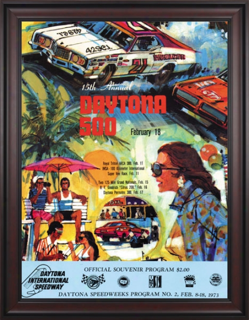 15th Annual 1973 Daytona 500 Framed 36 X 48 Program Stamp