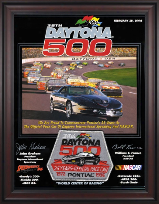 38th Annual 1996 Daytona 500 Framed 36 X 48 Program Stamp