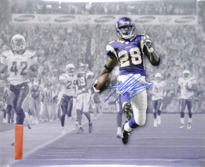 Adrian Peterson Minnesota Vikings Autographed 16x20 Photograph