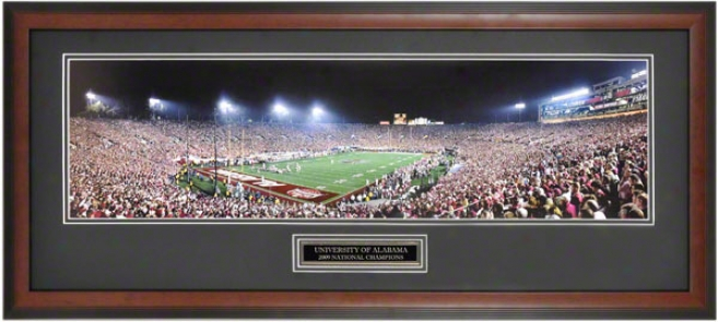 Alabama Crimson Tide Framed Unsigned Panoramic  Details: 2009 National Champiins