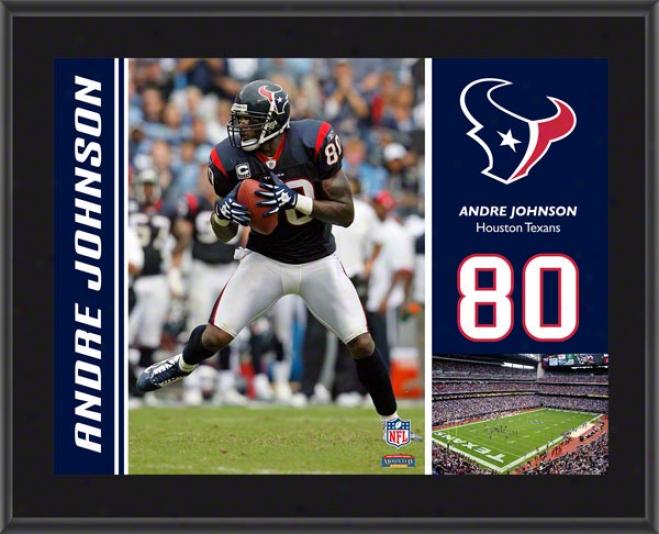 Andre Johnson Plaque  Detajls: Houston Texans, Sublimated, 10x13, Nfl Plaque