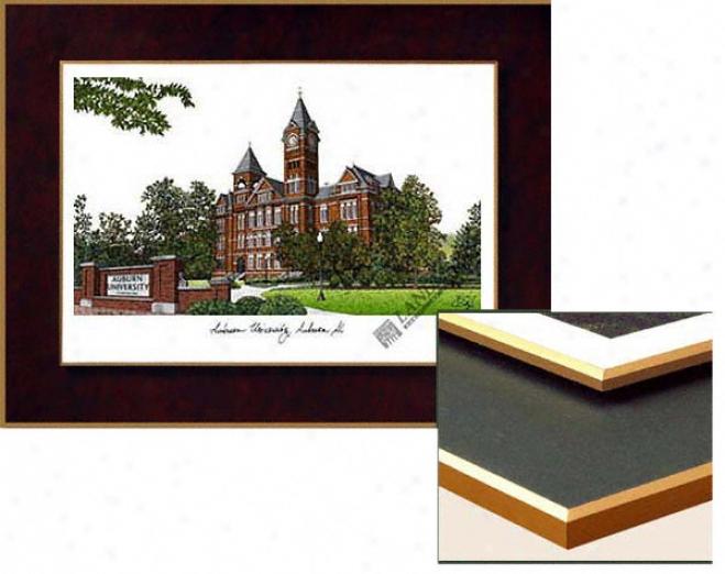 Auburn Tgers Collegiate Laminated Lithograph