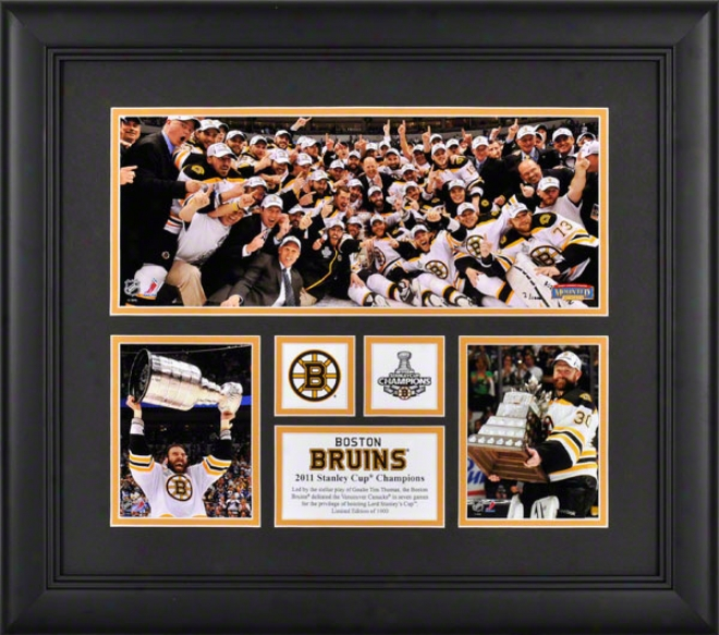 Boston Bruins Fraked 3-photo 2010-2011 Stanley Draught Champions Mini Panoramic Collage