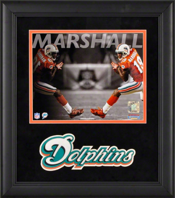 Brqndon Marshall Framed Photograph  Details: 8x10, Reflections, Miami Dolphins
