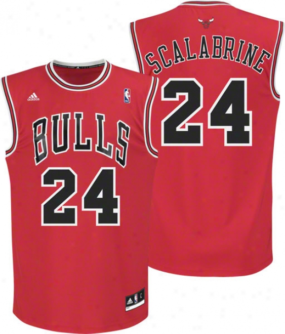 Brian Scalabrine Jersey: Adidas Red Replica #24 Chicago Bulls Jersey