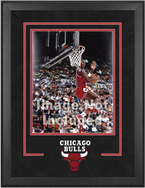 Chicago Bulls 16x20 Vertical Setup Frame With Team Logo