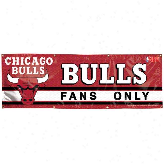 Chicago Bulls 2x6 Vinyl Banner