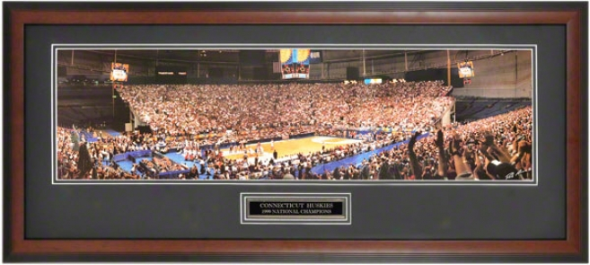 Connecticut Huskies - 1999 Ncaa Public Champions - Framed Unsigned Panoramic Photograph