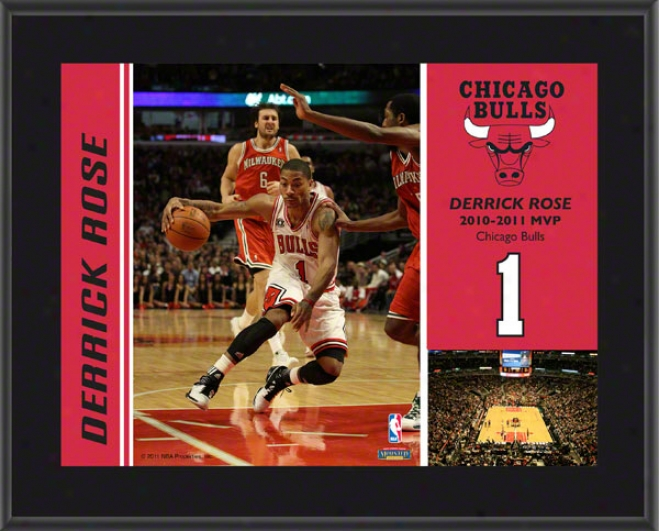 Derrick Rose 2010-11 Nba Mvp Chicago Bulls Sublimated 10x13 Poaque