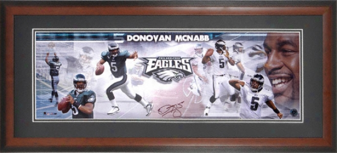 Donovan Mcnabb Philadelphia Eagles Framed Unsigned Panoramic Photograph