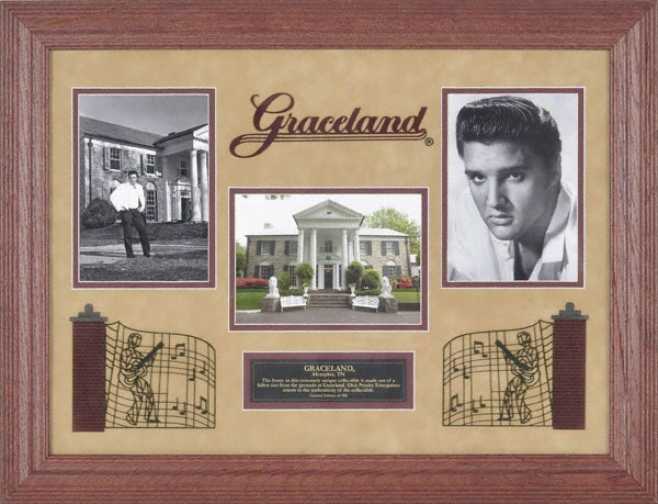 Elvis Presley Photographs With Graceland Tree Frame - L E Of 500