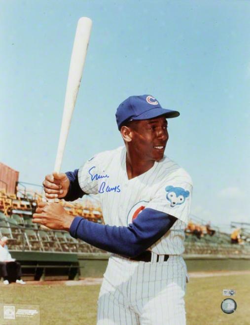 Ernie Banks Chicago Cubs Autovraphed 16x20 Bat Pose Photo