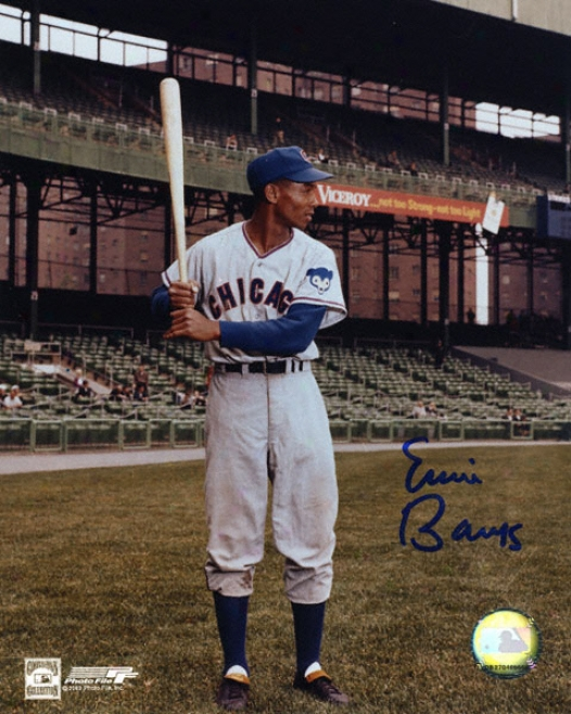 Ernie Banks Chicago Cubs - Bat Pose 3 - 8x10 Autographed Photograph