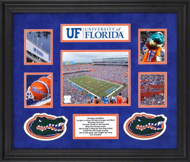 Florida Gators Framed 5-photograph Collage