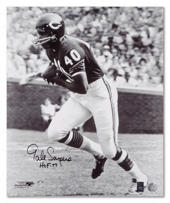 Gale Sayers Chicago Bears Black And White Autographed 16x20 Photograph With Hof Inscription