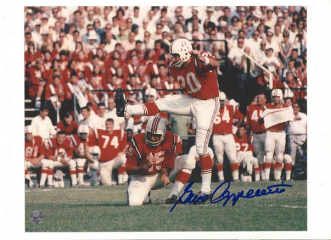 Gino Cappelletti Autographed New England Patriots 8x10 Photo
