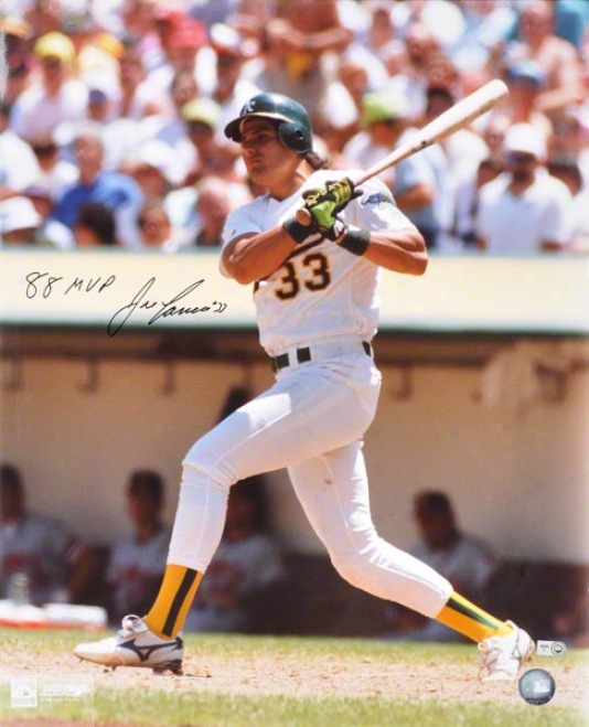 Jose Canseco Autographed Photograph  Details: 16x20, Oakland Athletics