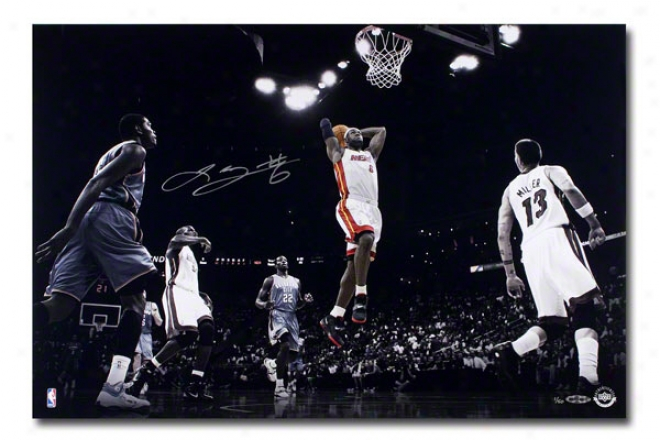 Lebron James Miami Heat Unframed Autographed Colors Of The Game 16&quotx24&quot Photograph