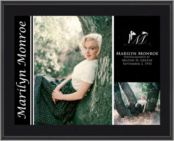 Marilyn Monroe - Tree Sitting - Sublimated 10x13 Plaqus