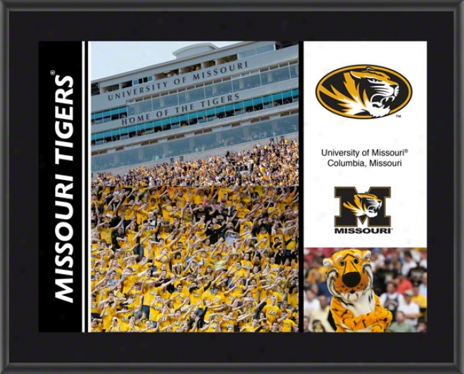 Missouri Tigers Sublimated 10x133 Flat plate of metal