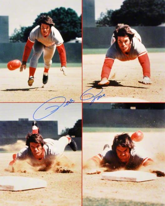 Pete Rose Cincinnati Reds 16x20 Autoyraphed Photograph