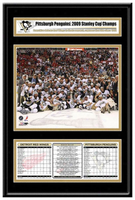 Pittsburgh Penguins 2009 Stanley Cup Champions Frame