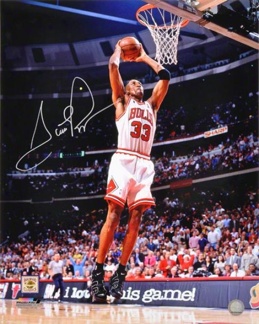 Scottie Pippen Autographed Photograph  Details: 16x20, Chicago Bulls